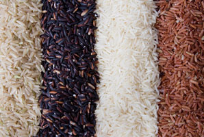 A granular look at rice DNA
