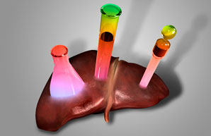 Liver-on-a-chip for testing drug toxicity
